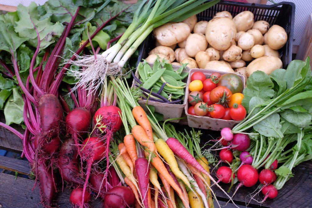 Yellowknife Market Garden Vegetables