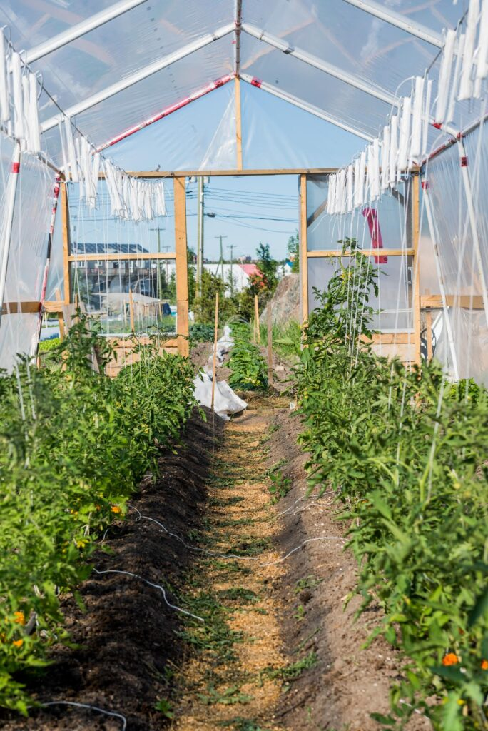 Yellowknife Greenhouse